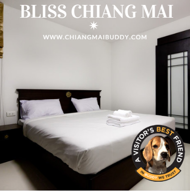 Blissful Living Chiang Mai Accommodation for $299 a Month
