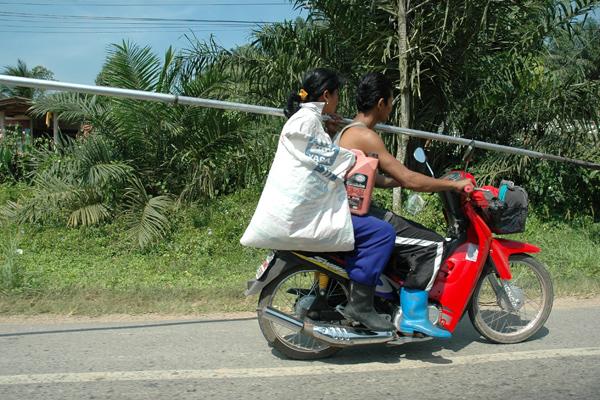 Motor-Bike-Pole