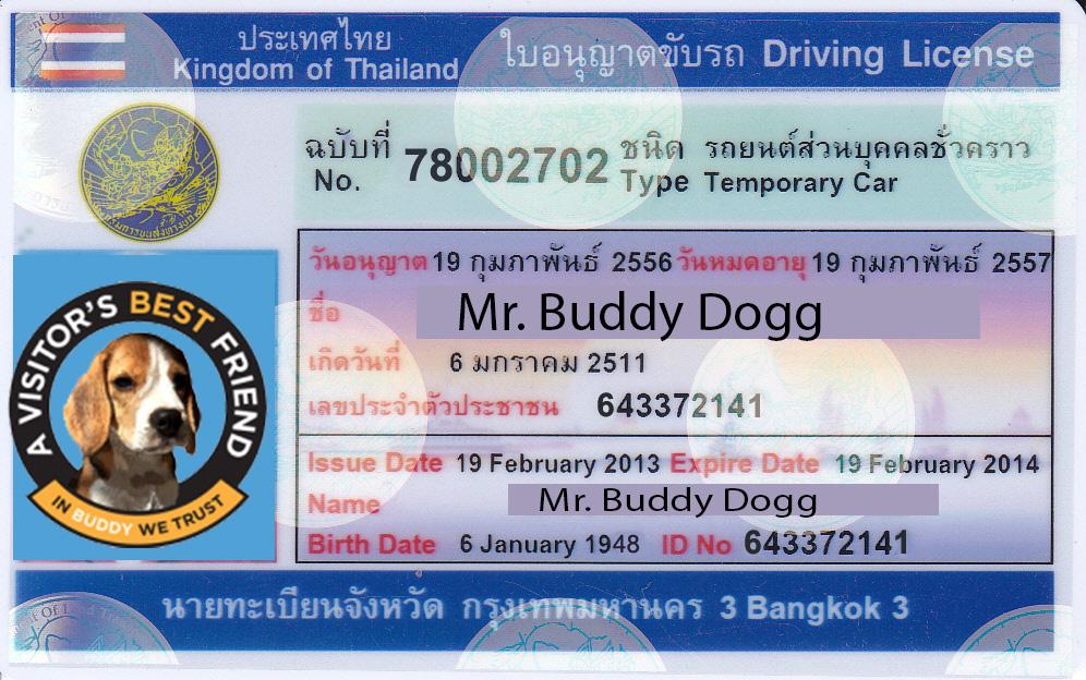 Thai Driving License Chiang Mai Buddy